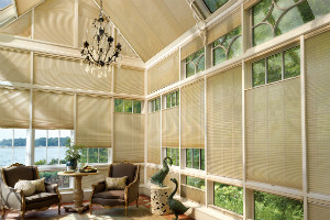 Honeycomb Shades boca raton