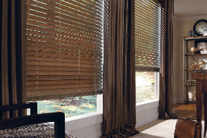 HORIZONTAL BLINDS boca fl